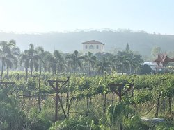 Wow...its a premier winery resort