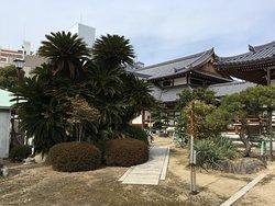 日蓮宗の大きな寺