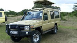 Private Safari Departures with Land Cruisers