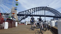 BlueBananas Electric Bike Tours