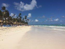Bělostná pláž hotelu Vik Arena Blanca