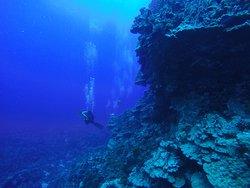 Snorkeling Rapa Nui