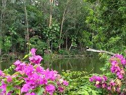 Parque Botânico Vale