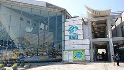 Kujukushima Aquarium Umikirara