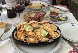 Plate of scallops at Liguria