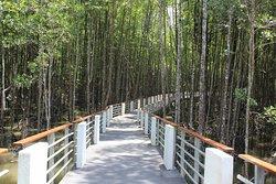 Langkawi Nature Park