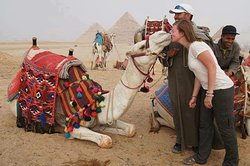 Really Egypt Tours