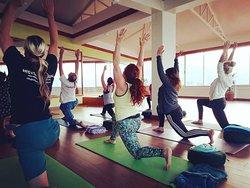 MUDRA Yoga and Fitness Studio