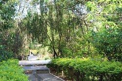 Hospitality- Truly amazing Bandhav Vilas