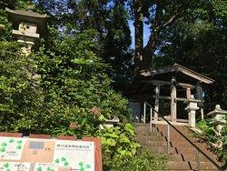 Sugawa Onsen Shrine