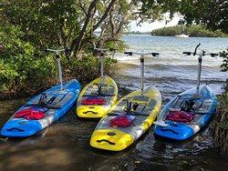 Walk on Water Pedalboard Tours