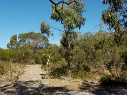 Bay Road Heathland Sanctuary