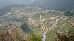 Gifu o Machu Picchu Tengu no Chabatake
