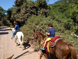 Moreno's Horseback Riding