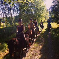 Copenhagen Horseback Riding