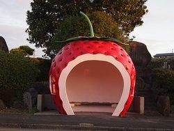 Fruits Bus Stop