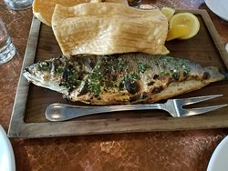 Fish Special of the Day