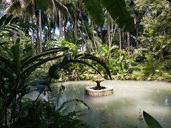 Excursion Ocho Rios Day Tours