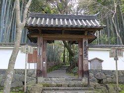 地蔵院 (竹の寺)