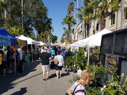 The Venice Farmer's Market