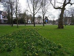 """Florapark Haarlem;architectuur uit de jaren 1880-1888"""