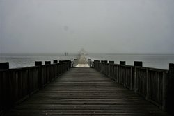 peaceful pier on a foggy day