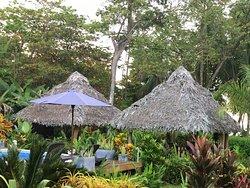 Yoga retreat paradise