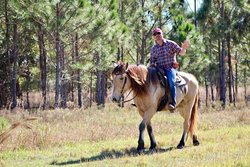 Horseback Riding at Deer Prairie Creek Preserve