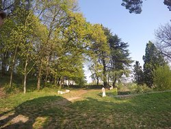 Parco di Bacco