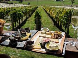 Tasmanian Wine & Cheese Tours