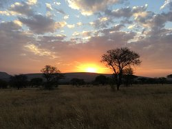 Camping in the middle of the Serengeti!