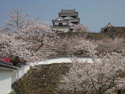 Ozu Shiroyama Park