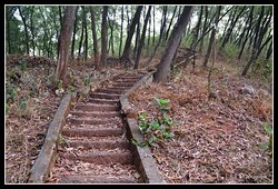 Way to hill top
