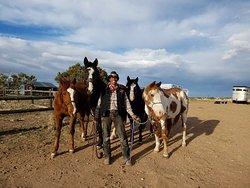 Vision Quest Western Horseback Rides & Lessons