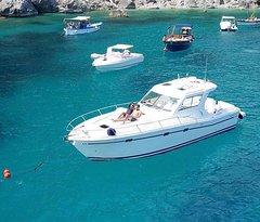 Fernando's Boats