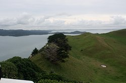 View back towards Auckland and Manukau itself