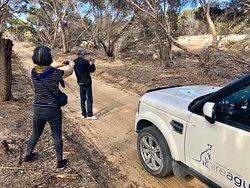 Kangaroo Island Hire a Guide
