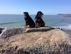 Foto tirada do i-phone 7 do topo da Ilhota da Praia da Barra, altitude 17 metros