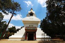 La Gran Stupa Bon para la Paz Mundial