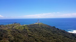 Cape Reinga Lighthouse Walk