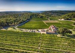 Kabola Winery