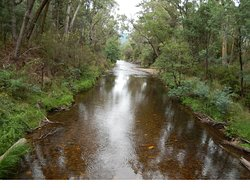 Cherry Walk Nature Trail