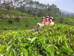 Munnar Great Think Adventures
