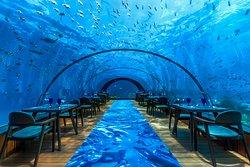 5.8 Undersea Restaurant