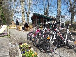 Accueil / Buvette / Site d'information - Camping Au Jardin