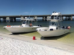 O Sea D Fishing Charters