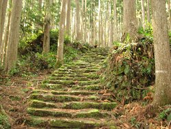 Kumano Kodo Pilgrimage Routes