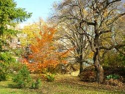 Budai Arboretum