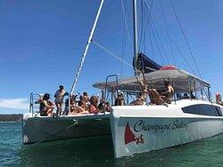 Champagne Sailing Sydney