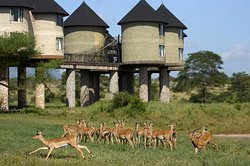 Qta Tours & Safaris